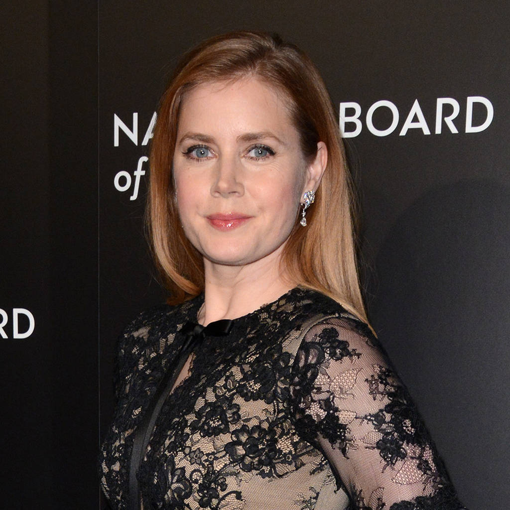 Stranger Things cast blanked Amy Adams for Amy Schumer